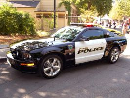 Mustang Police Car 2 by outlaws69