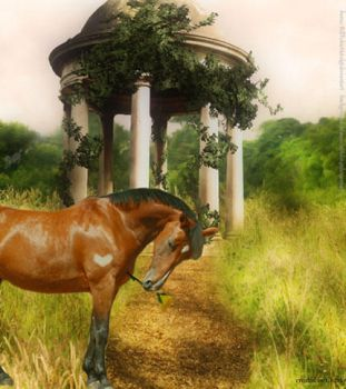 Romantic Bay Horse by CharlieDandy