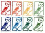 Barn owl - postcards by Milana87