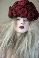 Red Roses by DavidCharles