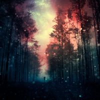 magical forest III by BaxiaArt