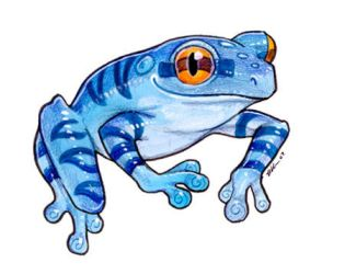 Small Blue Frog by ursulav