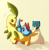 Bayleef, Croconaw and Quilava by SeviYummy