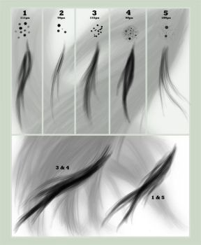 Hair brush set by para-vine