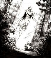 Superman panel by Cinar