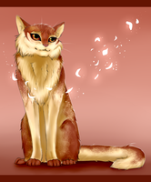 Cherry blossoms - (Gift) by Copperlight