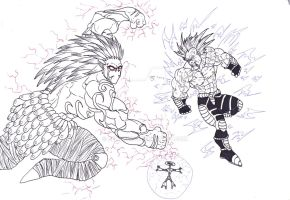 Saiyan vs Chaos wannabe by Bender18