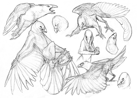 Lots of Crows by tashcrow
