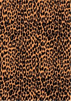 Leopard Print Vector 2 by inferlogic