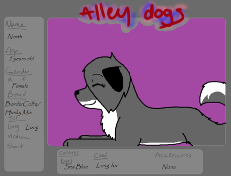 North (Reff sheet for Alley Dogs) by xXGreyWolflingXx