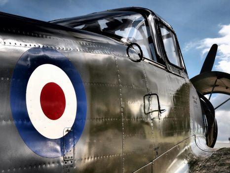 Percival Provost - Old Warden by davepphotographer