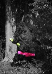 Sasquatch - AKA Bigfoot by mjranum