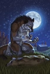 Werewolf Tale - Front Cover by SilverWerewolf09