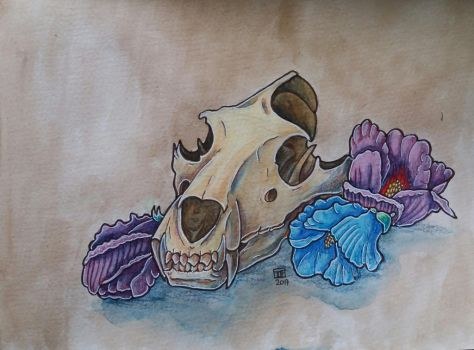 Skull  with flowers by Black-Rose-92