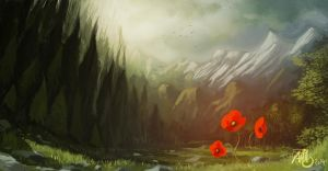 The poppy by Traaw