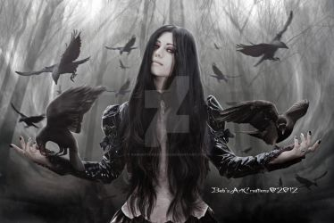 Jackdaw by babsartcreations