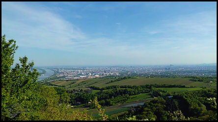 View Over Vienna From Leopoldsberg-001 by Charmadige