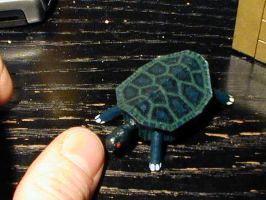 Turtle 1 by DavidStaege