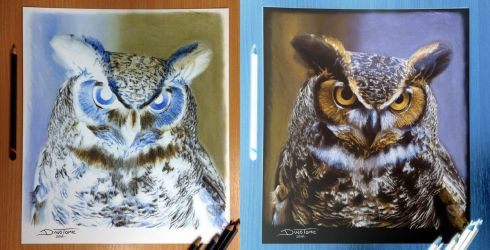 Owl Inverted Color Pencil Drawing by AtomiccircuS