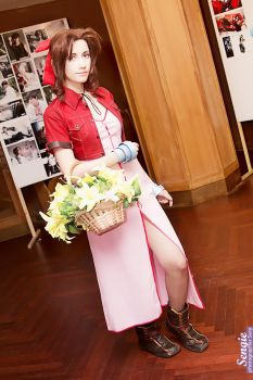 Aerith by Narga-Lifestream