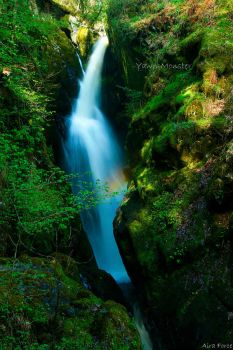 Aira Force by Yawn-Monster