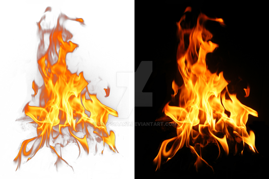 Fire on a transparent background. by PRUSSIAART