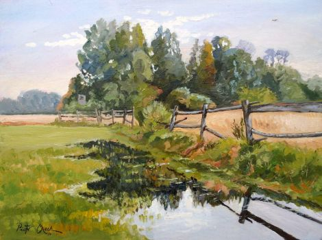 landscape with fence by Dreamnr9