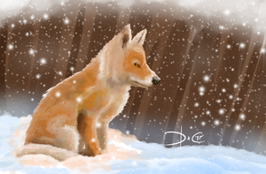 A Fox In The Snow by DarK-Camper
