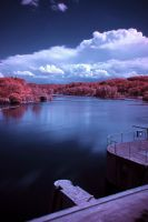 Infrared Worlds No. 7 by marcialbollinger