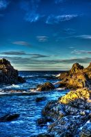 Rugged Newfoundland Shores HDR by Witch-Dr-Tim
