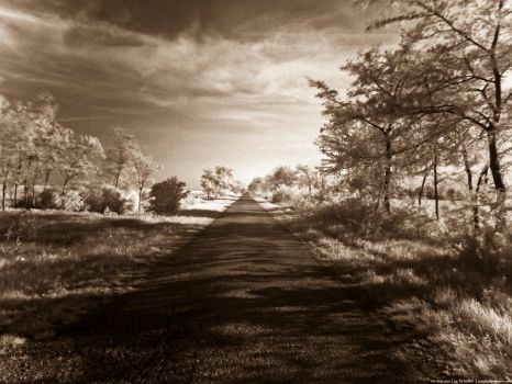 The long road - sepia by scoubo