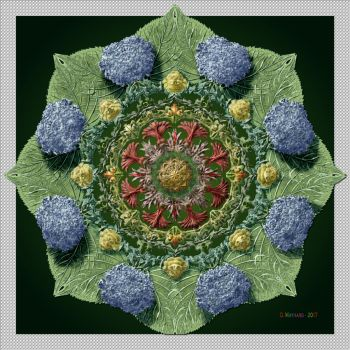 QH-20171215-Holiday-Florida-Garden-Mandala-v2 by quasihedron