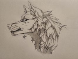 .:Wolf sketch #4:. by TheBloodyWolf168