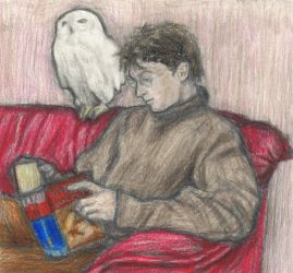 Harry Potter reading Harry Potter by gagambo