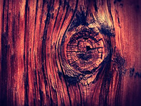 Wood. by Joey-2000