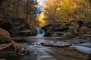 Murry Reynolds Falls by III-FAWCETT-III
