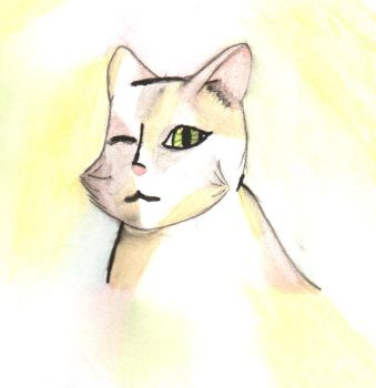 water colour kitty by the-alchemy-of-me