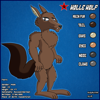 Wolle reference sheet (2018) by WolleWolf95