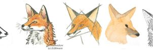 7 foxes - 7 styles by Woodswallow