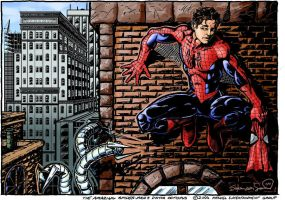The Amazing Peter Parker by magnus97