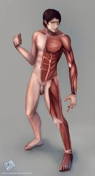 Male Muscles by CatCouch