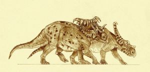 Kosmoceratops and Vagaceratops by Kahless28