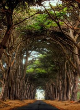 The Tunnelways (Somewhere in Helena) by Dr-Strange-Is-Me
