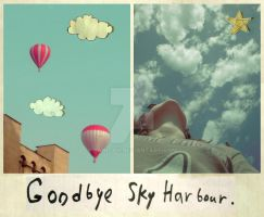 Goodbye Sky Harbour. by saniday