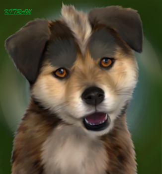 GNG REALISTIC CHIBI PUPPY - What the future brings by KITRAM