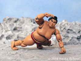 3D printed Sumo action figure pose G by hauke3000