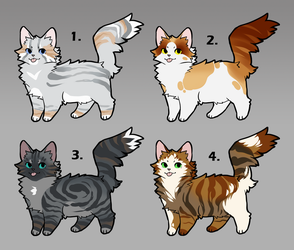 Cat Adopts [1/4 OPEN] *PRICE LOWERED by CaliberArts