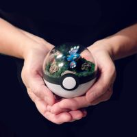 Poke Ball Terrarium - Kyogre - Small