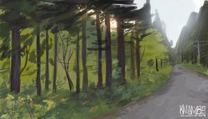 Forest roads by kalambo