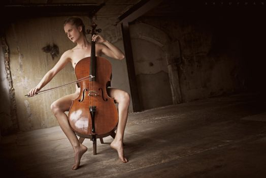 The Cello Of Art by ArtofdanPhotography